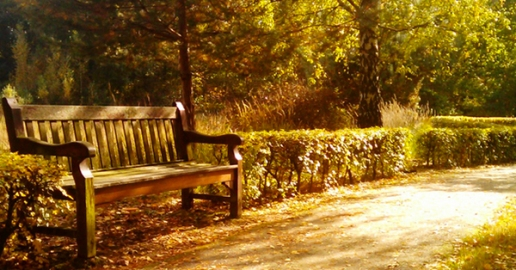 park-bench1